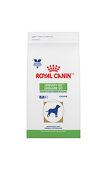 urinary so urinary tract bladder health for dogs cats royal canin. Black Bedroom Furniture Sets. Home Design Ideas