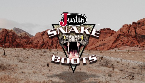 Justin Boots Snake Boots