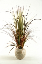 "Mixed Grasses- 30""H , 91718"