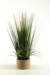 "Mixed Grasses- 30""H , 91638"