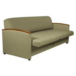 Sleeper Sofa With Pull Out Cushions 25114