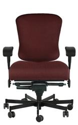 Dauerhaft 24/7 Fabric Chair with Swing Arms, 57226
