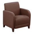 "Parkside Guest Chair in Leather - 27""W, 53632"