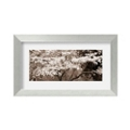 Cherry Blossoms by Steven Meyers- Framed Sepia Photography Print, 87614