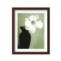Single Anemone by Steven Meyers- Framed Photography Print, 87616