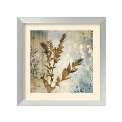 Organic Elements II by Tandi Venter - Framed Art Print, 87645