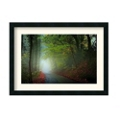 The Lane by Adelino Goncalves - Framed Photography Print, 87652