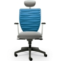 Executive Chair with Headrest and Extra Back, 57107