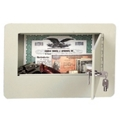 Economy Wall Safe, 36031