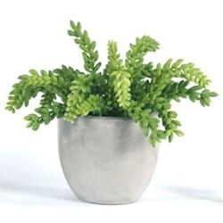 """Faux Succulent in Concrete Pot 11""""H, 93000"""