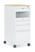 Lectern Storage Unit, 220231
