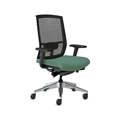 Mesh Back Ergonomic Task Chair, 56623