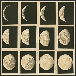 """Phases of the Moon Framed Canvas Art Print - 32""""W x 32""""H, 92594"""