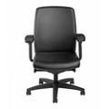 Mid Back Leather Chair , 57119