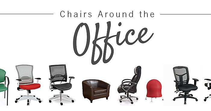 Chairs Around the Office - Rachel Bindl's Safco Zenergy Ball Chair