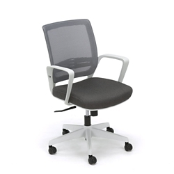 Mesh Back Task Chair With White Frame, 56063
