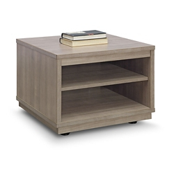 Encounter Open Storage End Table, 46837