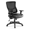 Ranier Leather Seat Task Chair, 51748