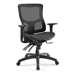 Ranier Ergonomic Mesh Task Chair, 51749