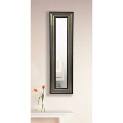 "29.5""H x 15.5""W Decorative Frame Mirror Panel, 91471"