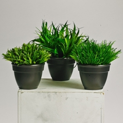Potted Grass - 8 Inches Tall - Set of 3