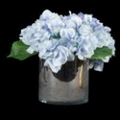 "Small Hydrangea In Glass Cylinder - 11""H, 87697"