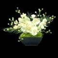 "Orchid Garden - 16""H, 87701"