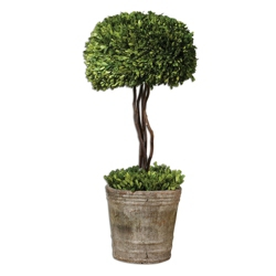 Preserved Boxwood Single Sphere Topiary 33 H