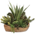 "Salar Succulents in Teak Bowl - 27""W x 22""H, 90111"