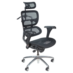 All Mesh Ergonomic Computer Chair with Built-in Coat Hanger, 56987