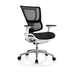 Mesh Executive Chair, 56659