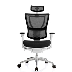 Mesh Executive Chair with Headrest, 56658
