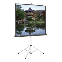 "70"" W x 70"" H Portable Square Projection Screen, 43263"
