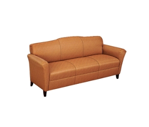 Contemporary Sofa in Leather, 53791