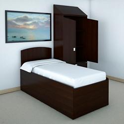 Behavioral Health Platform Bed and Wardrobe, 26312