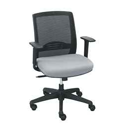 C2 Collection Petite Mesh Chair with Memory Foam, 57005