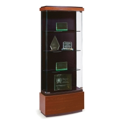 Medium Display Case, 31654