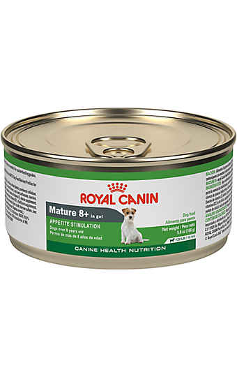 Best Pet Food For Your Dog Or Cat S Specific Needs Royal