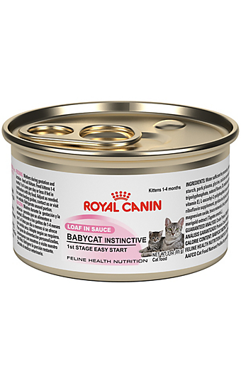 Mother Amp Babycat Dry Cat Food Royal Canin Feline Health