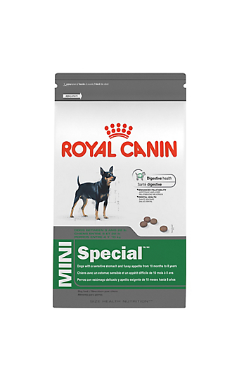 dog food for small extra small miniature breeds royal canin. Black Bedroom Furniture Sets. Home Design Ideas