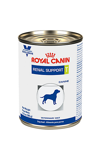 renal support diet for cat kidney health royal canin