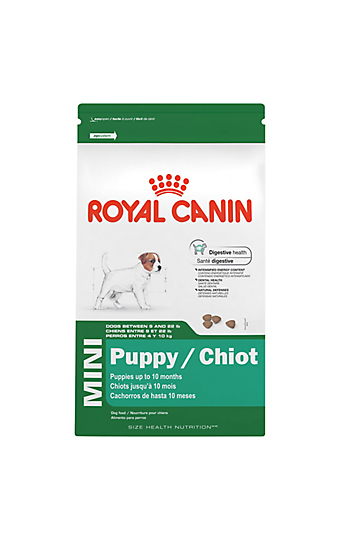 pug puppy dry dog food royal canin breed health nutrition. Black Bedroom Furniture Sets. Home Design Ideas