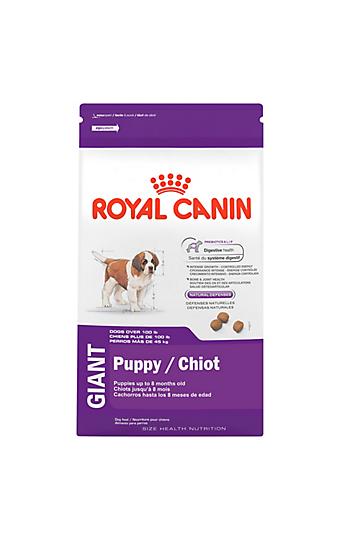 dog food for giant breeds over 99 pounds royal canin. Black Bedroom Furniture Sets. Home Design Ideas