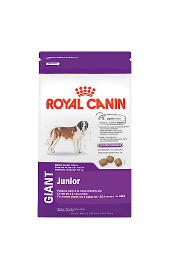 puppy food and how much to feed a puppy royal canin. Black Bedroom Furniture Sets. Home Design Ideas