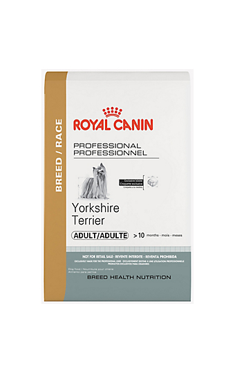 yorkshire terrier puppy dry dog food royal canin breed health nutrition. Black Bedroom Furniture Sets. Home Design Ideas