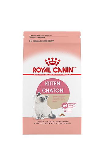 Kitten Food And Nutrition Information Royal Canin