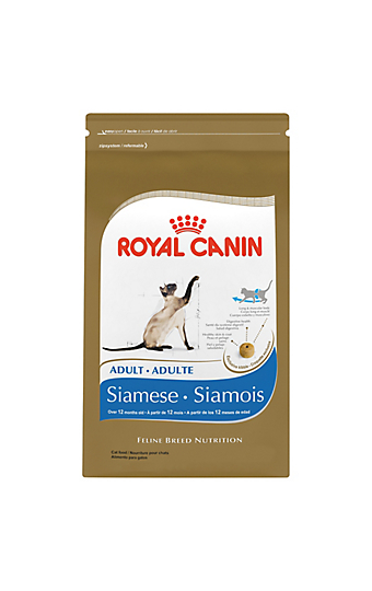 Persian Maine Coon Ragdoll Siamese Cat Food Royal Canin