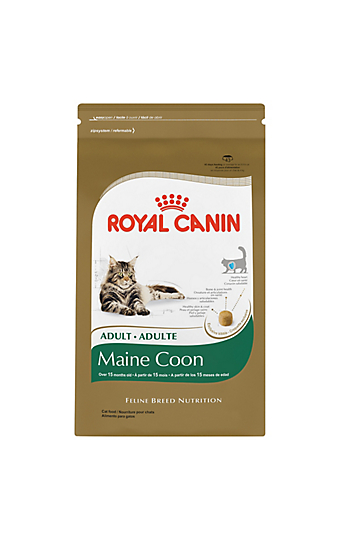 How do you choose the right cat food for your pet?