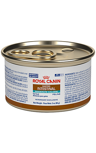 Gastrointestinal Gi Cat And Dog Food For Healthy