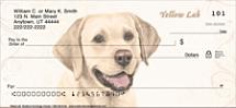 Yellow Lab Dog Personal Checks